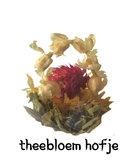 theebloem Hofje
