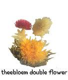 theebloem Double Flower