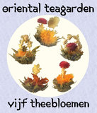 Vijf verschillende theebloemen