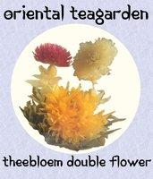Theebloem Double Flower 2016