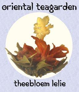 theebloem lelie